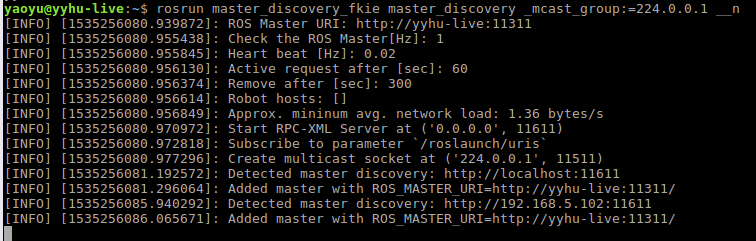 <img>Figure 3 Terminal output after starting master_discovery node on C0.